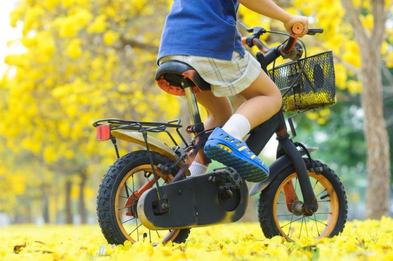 טיולי אופניים אבא ילד